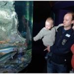 Derry Bed & Breakfast Riverwatch Aquarium 3